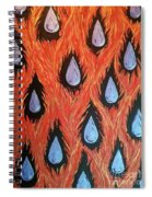 Fire And Rain Reversible Spiral Notebook