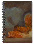 Fire And Sand Spiral Notebook