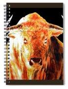 F I R E  .  T O R O   .   In Black Spiral Notebook