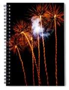 Fire Dandelion Bouquet Spiral Notebook