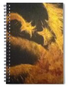 Sun Dragon Spiral Notebook