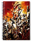 Fire In The Corn Field Spiral Notebook