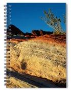 Fire Lines Spiral Notebook
