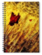 Fire Of The Frost Spiral Notebook