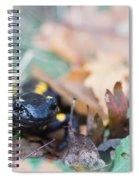 Fire Salamander Dry Leaves Spiral Notebook