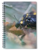 Fire Salamander Front View Spiral Notebook