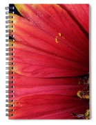 Fire Spokes Spiral Notebook