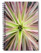 Firecracker Bromiliad Spiral Notebook
