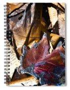 Fired Spiral Notebook