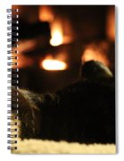 Fireside Cat Nap Spiral Notebook