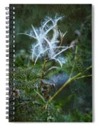 Fireweed Flame Out But Spreading Spiral Notebook