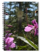 Fireweed Number 10  Spiral Notebook