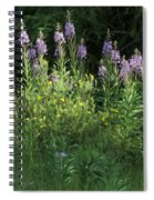 Fireweed Spiral Notebook