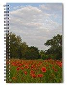 Firewheel Field Spiral Notebook