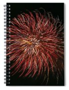 Fireworks At Night 5 Spiral Notebook