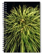 Fireworks At Night 8 Spiral Notebook