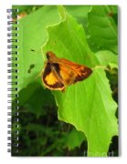 Firey Skipper Butterfly Spiral Notebook