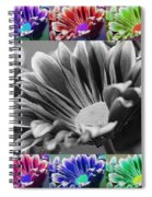 Firmenish Bicolor In All Shades Spiral Notebook