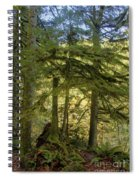 Firs And Ferns Spiral Notebook