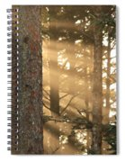 Firs On Fire Spiral Notebook