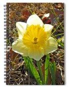 First Bloom Spiral Notebook