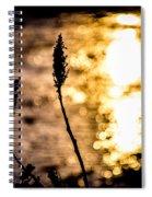 First Day Spiral Notebook