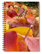 First Day Of Fall Spiral Notebook