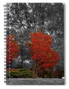 First Fall Color In Red Spiral Notebook