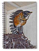 First Flight Preparations Spiral Notebook