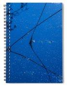 First Frost-3 Spiral Notebook