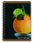 First Harvest 2015 Spiral Notebook
