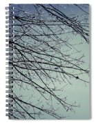 First Of Winter Spiral Notebook