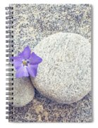 First Periwinkle  Spiral Notebook
