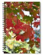 First Signs Of Fall  Spiral Notebook