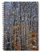 First Snow 3 Spiral Notebook