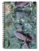Fish Abstract Spiral Notebook