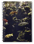 Fish Aquarium Spiral Notebook