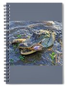 Fish For Dinner  Spiral Notebook