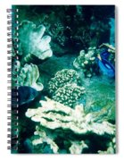 Fish In The Coral Spiral Notebook