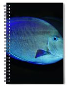 Fish Not For Dinner Spiral Notebook