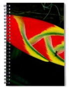 Fish Out Of Water Spiral Notebook
