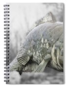 Fish Sculpture Spiral Notebook