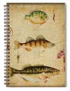 Fish Trio-c-basket Weave Spiral Notebook