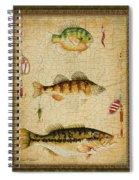 Fish Trio-c-green Spiral Notebook