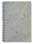 Fishermans Foot Prints Spiral Notebook