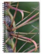 Fishhook Barrel Cactus Spines Spiral Notebook