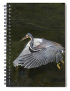 Fishing Tri Colored Heron Spiral Notebook