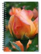 Fit For A Queen Spiral Notebook
