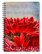 Fitting In By Diana Sainz Spiral Notebook