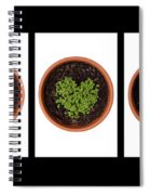 Five Days On Black Spiral Notebook